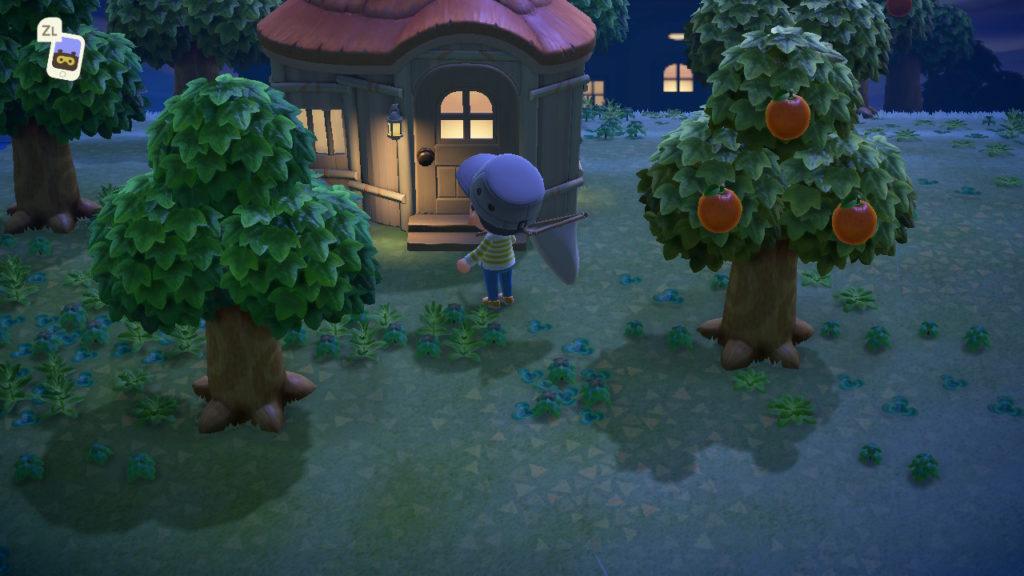 あつまれどうぶつの森 シェリーの家
