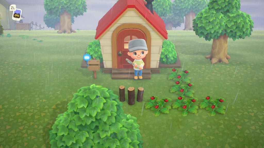 あつまれどうぶつの森 家が建った